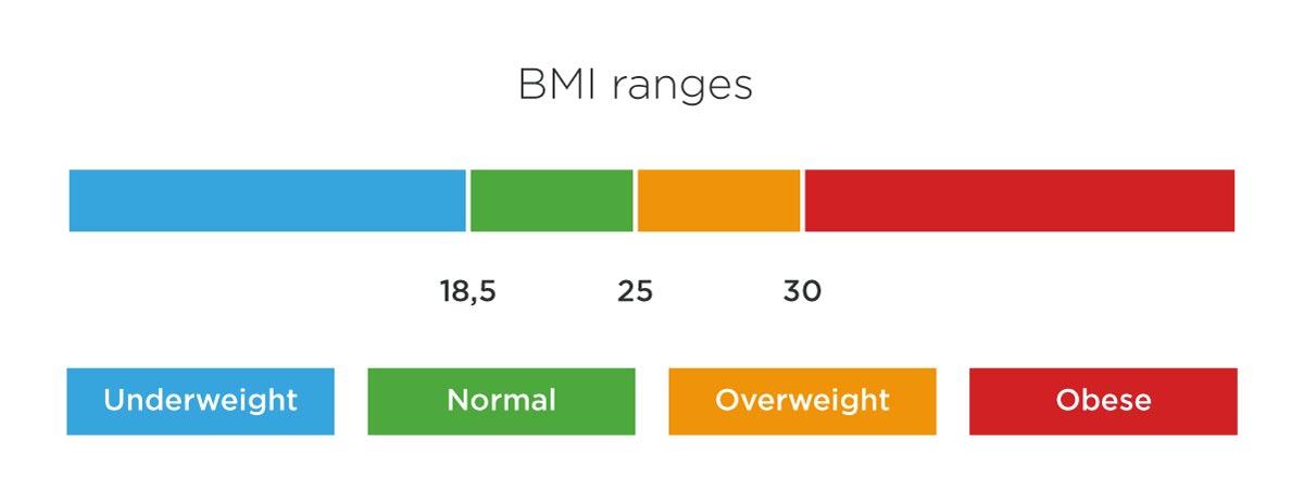 BMI ranges