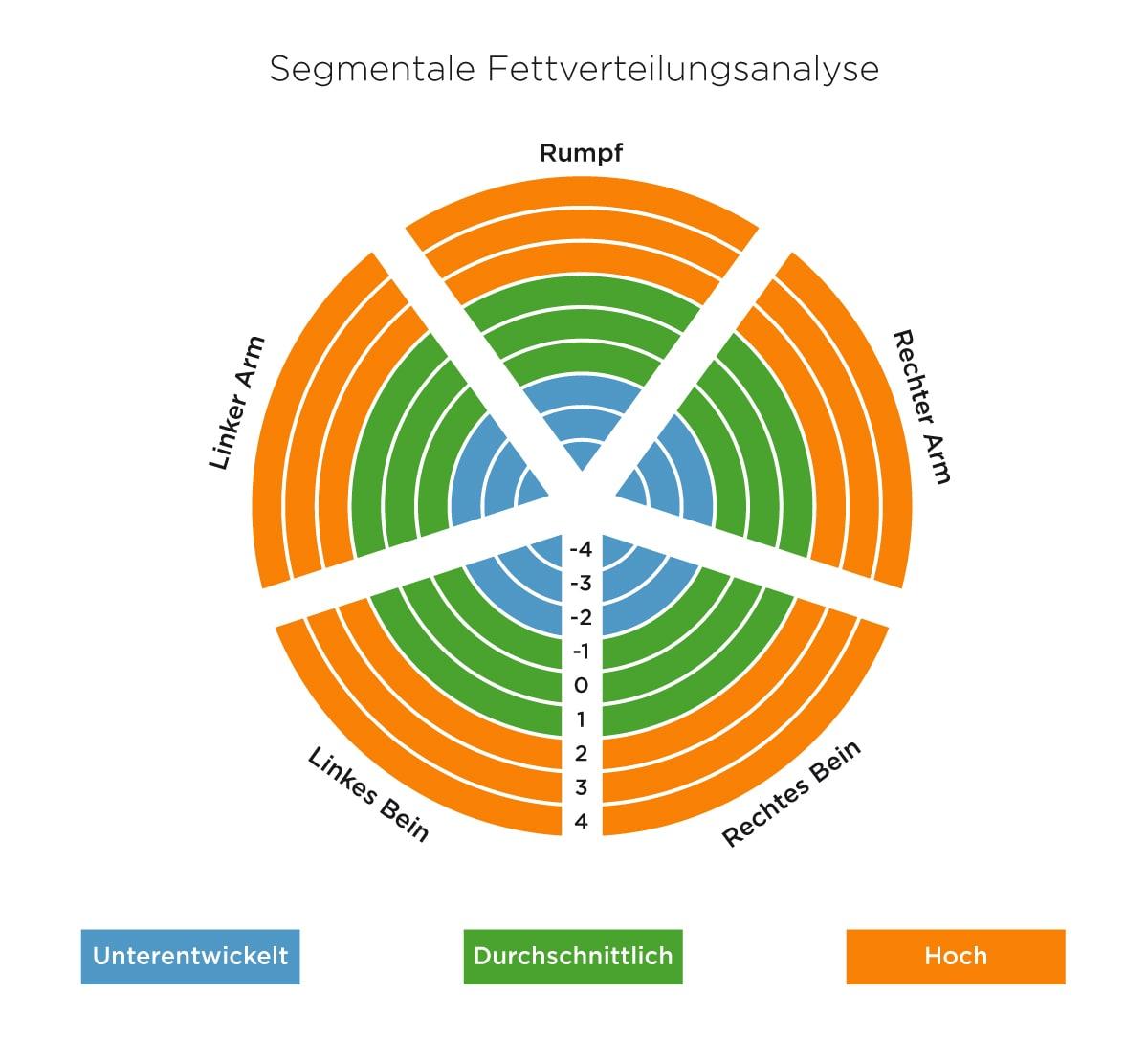 Segmentale Fettverteilungsanalyse